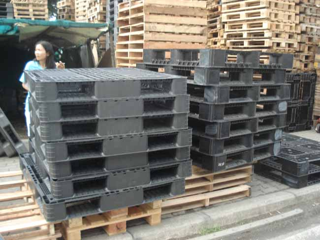 Thailand Plastic Wooden Pallets For Sale In